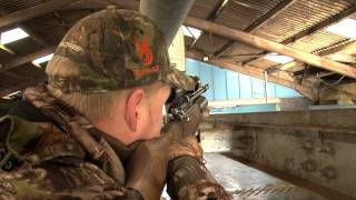 Airgun Hunting – Shooting feral pigeons with a Daystate Airwolf in Scotland