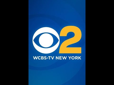 Simone Gordon/The Black Fairy Godmother Interview on CBS 2 NY Sunday Morning