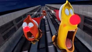 LARVA - CHRISTMAS SPECIAL 🎄 Cartoon Movie   Cartoons For Children   Larva Cartoon   LARVA Official