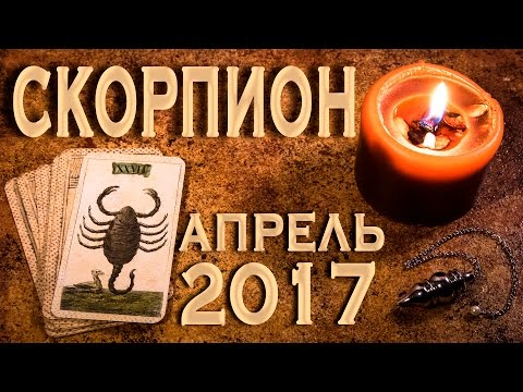 Лев в год крысы гороскоп