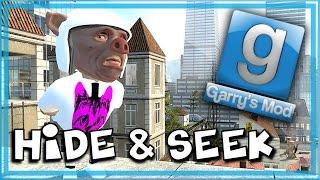Garry's Mod Bird Mod! - Gmod Hide and Seek Funny Moments - Flying, Elevator of Doom!