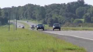 Newswise:Video Embedded lovebug-invasion