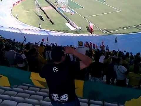 """""""tiburon QUE PUTOS QUE SON RAVN"""" Barra: Rebelión Auriverde Norte • Club: Real Cartagena"""
