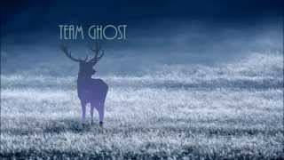 Team Ghost - Things Are Sometimes Tragic
