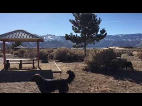 Video Of Washoe Lake, NV