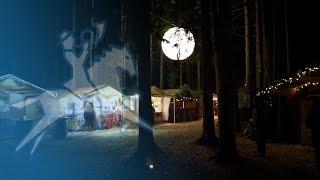 Waldweihnacht in Halsbach: ein Wintermärchen