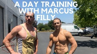 MARCUS FILLY WORKOUT OF THE DAY (Rest of the world version)