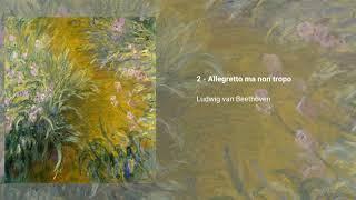 String Quartet no. 11 in F minor 'Serioso', Op. 95
