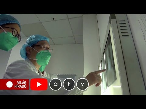 Giardia zysten