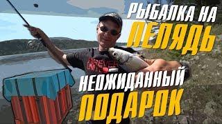 Рыбалка на рипуса весной в красноярске