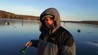 Пермь отчеты с рыбалки