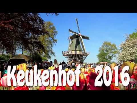 Video Keukenhof 2016