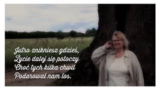 Stanisława Celińska – Już nie trzeba mi (official lyric video)