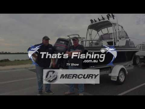 2018 Mercury Marine 115 hp Command Thrust FourStroke in Mountain Home, Arkansas