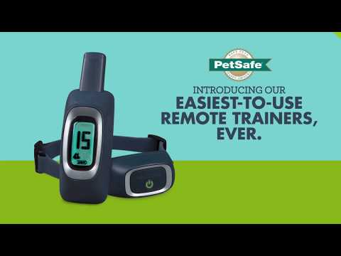PetSafe—The Easiest-to-Use Dog Training Tool, Ever—b15s