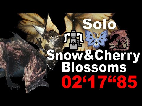 Really Fastest Way to HR999, Snow & Cherry Blossoms Solo HBG
