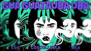 Guatauba - Cosculluela - AUDIO OFICIAL -
