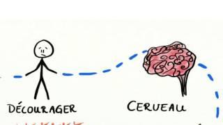 Vignette de L'apprentissage sans les limites intérieures