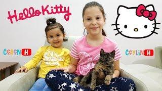 Ceylin & Ceren'in Kedisi Duman Karşınızda! My Little Cat! Johny Yes Papa ABC Song Pretend Play Video