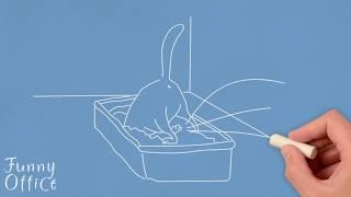 DIY Cat Litter Box Ideas Homemade
