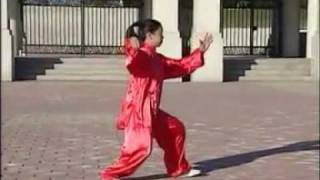 Yang Style Taijiquan 108  part 1 of 3