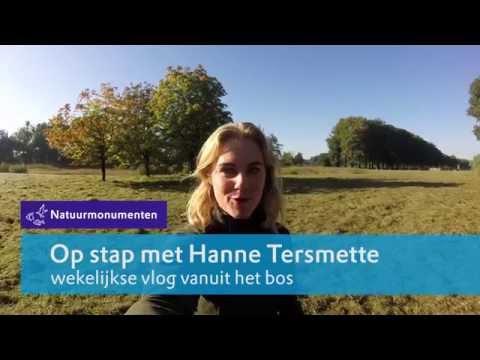 Op stap met boswachter Hanne