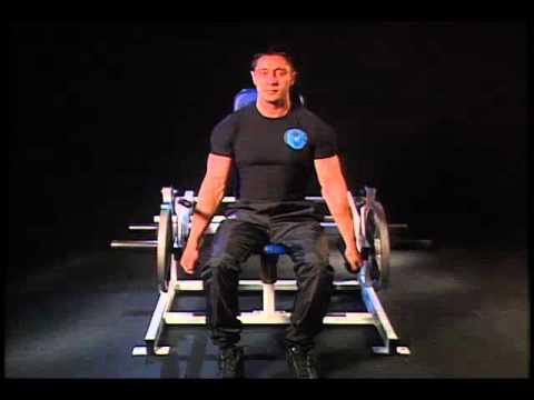 How to do Seated Machine Shoulder Shrug correctly? Avoid any injury. #126