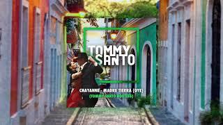 Chayanne - Madre Tierra (Oye) (Tommy Santo bootleg)