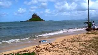 preview picture of video 'Oahu, Around the Island on Kamehameha Hwy.m2ts'