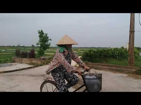 Quỳnh Hoa, Quỳnh Phụ, Thái Bình sau hơn 30 năm-2