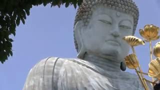 神戸観光スポット穴場隠れパワースポット兵庫大仏の底力/奈良の大仏や鎌倉の大仏と違い、訪れる人が少ない分、ご利益ありそう/いいお顔、いいお姿でした