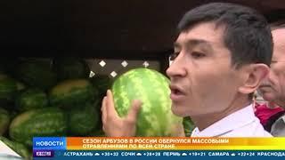 Сезон арбузов в России стартовал с массовых отравлений