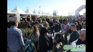 In Fiera...fiori, piante, macchine agricole, spettacoli, prodotti tipici..