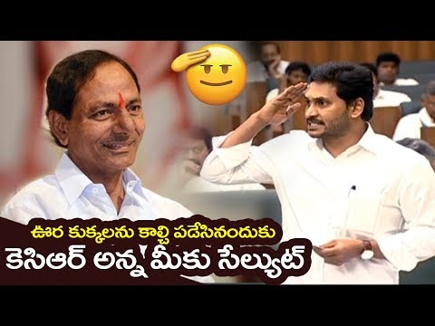 YS Jagan Emotional Salute To CM KCR and Telangana Police Over Disha issue | Filmylooks