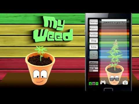 Video of My Weed - Grow Marijuana