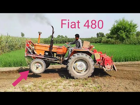 Fiat 480 Tractor Showing The Power With Rotavator In Field