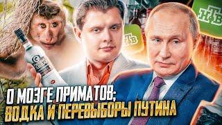 Впервые на НТВ о мозге приматов; водка и перевыборы Путина: выступление Е. Понасенкова
