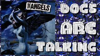 The Angels - Dogs are Talking