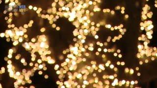 Funchal Weihnachtsbeleuchtung 2015