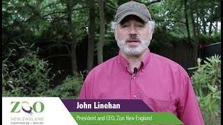 ZNE President and CEO, John Linehan, welcomes you to A Wild Affair