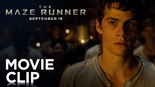 """Fight"" Clip - The Maze Runner"