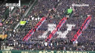 長田高校 甲子園アルプス応援 2016選抜高校野球 応援歌