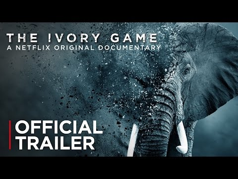 The Ivory Game ( The Ivory Game )