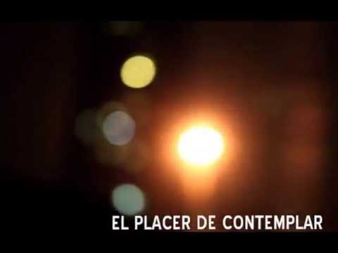Hijo Jueves - Newi (Lyric Video)