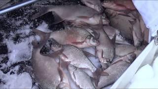 Рузское водохранилище. рыбалка
