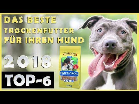 🔥Hunde Trockenfutter Test 🔥 Welches Trockenfutter Für Hunde Ist Das Beste? 🐶