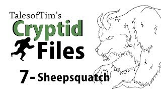 What is the Sheepsquatch? - TalesofTim's Cryptid Files
