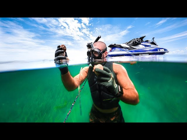 Exploring Ocean's Bottom for Edible TREASURE!! (Tropical)
