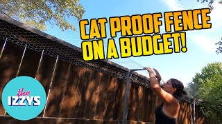 Cat Proofing a MASSIVE Back Yard under $300?