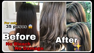 DIY Non Bleach Affordable Hair Color | Ash Blonde Bremod